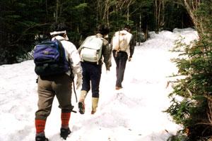 腐った雪で歩きにくい